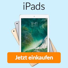 Apple iPad kaufen bei asgoodasnew